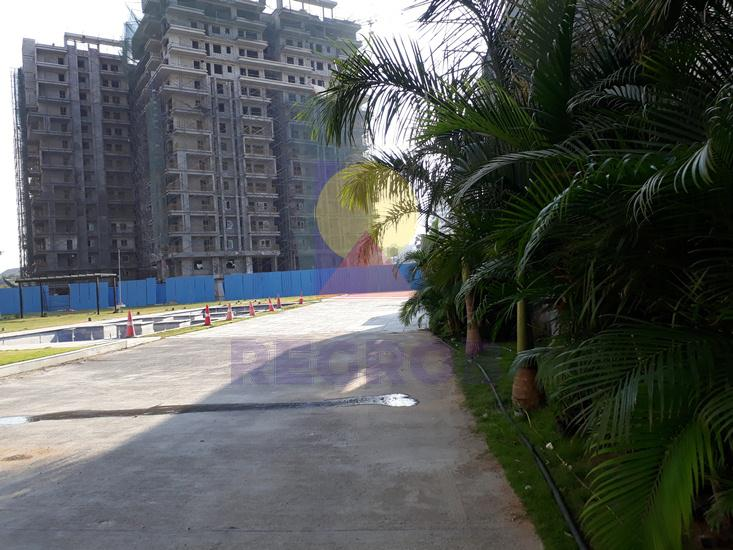 Jain Carlton Creek actual images